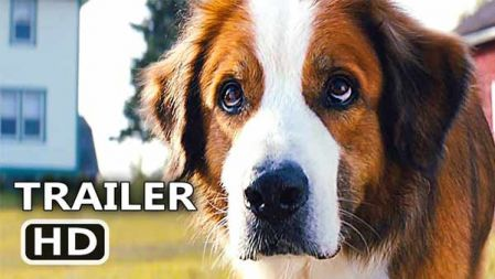 A Dogs Journey Trailer #1 (2019) | Movieclips Trailers