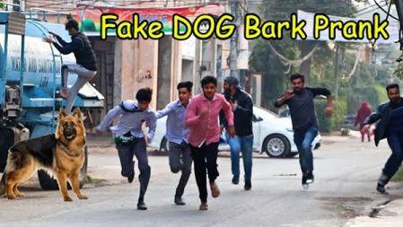 Fake Dog Bark Prank | Pranks Videos| LahoriFied